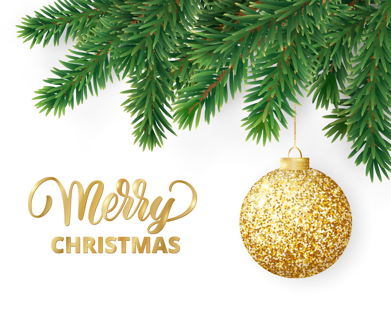 Merry Christmas! – Paterno Nurseries Inc.