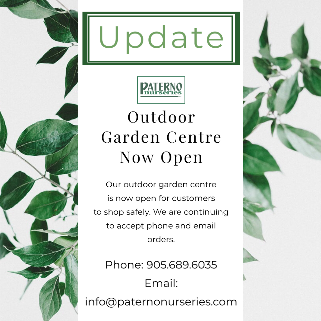 Paterno Nurseries Now Open